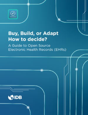 "Publication ""Buy, Build or Adapt: How to Decide?"