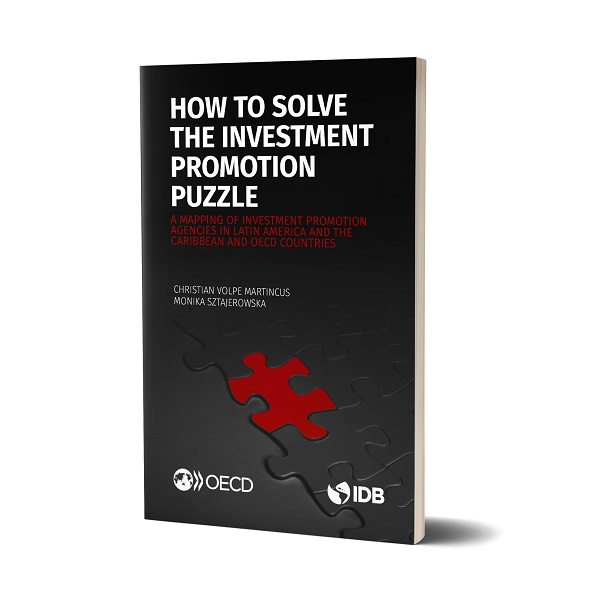 How to Solve the Investment Promotion Puzzle