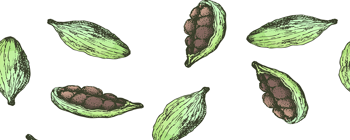 Lessons From Cardamom for a Green Recovery